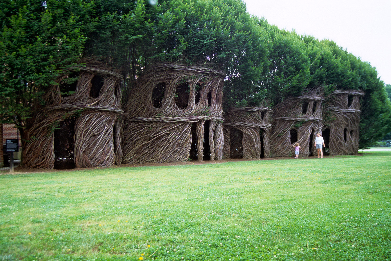 Art Installation by Patrick Dougherty