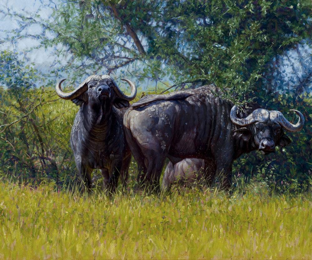 Traditional Art by John Banovich