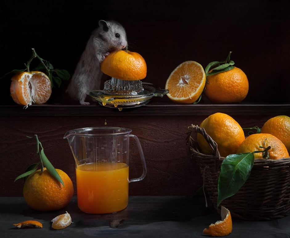 Conceptual Photography by Elena Eremina