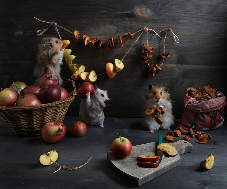 Conceptual Photography by Elena Eremina