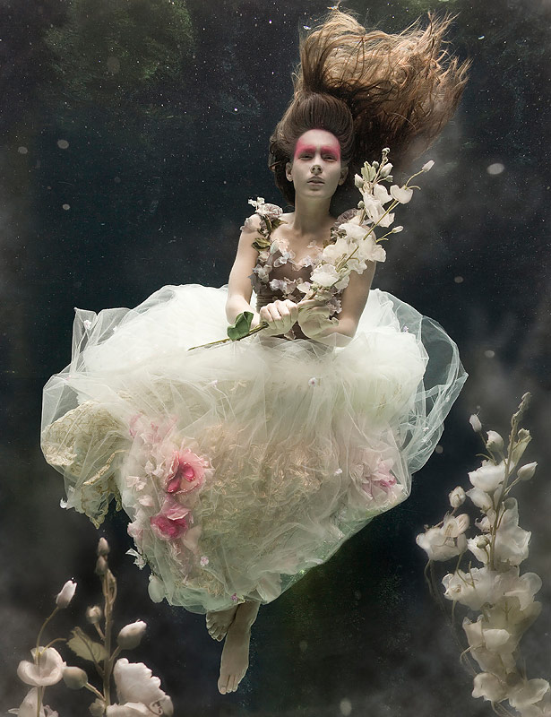 Underwater Photography by Zena Holloway