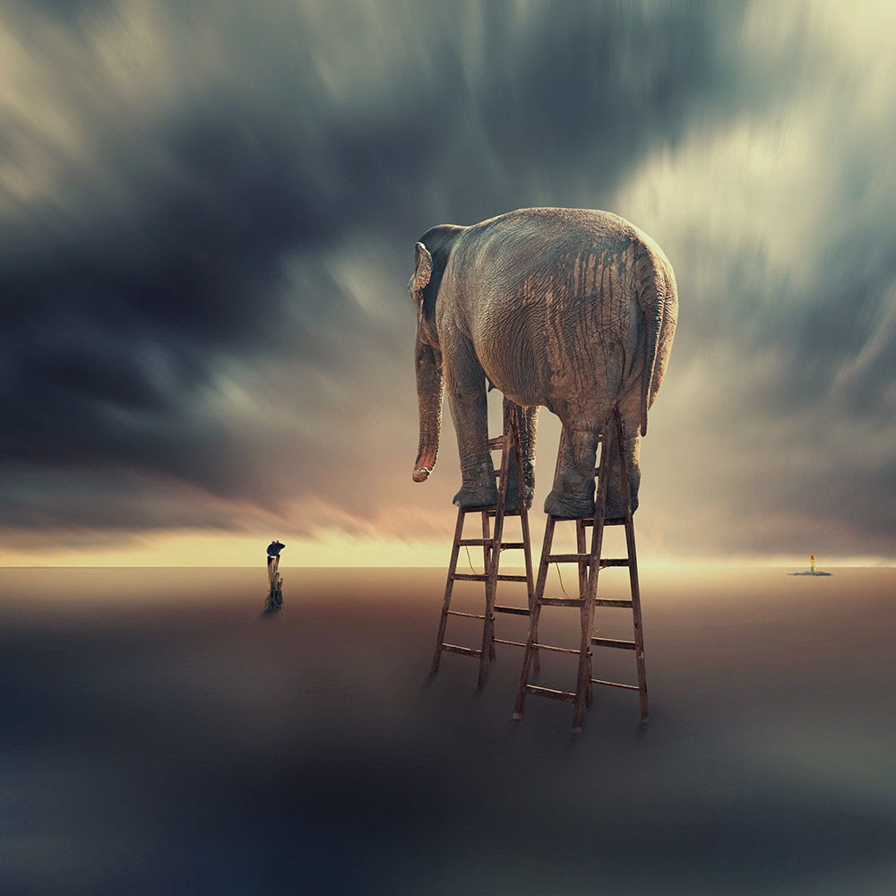 Artwork by Caras Ionut